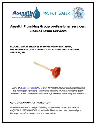 Asquith Plumbing Group professional services: Blocked Drain Services
