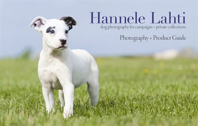 2018 Dog Photography Guide