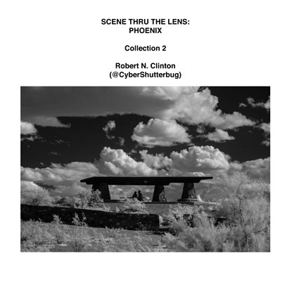 Scene Thru the Lens: Phoenix - Collection 2