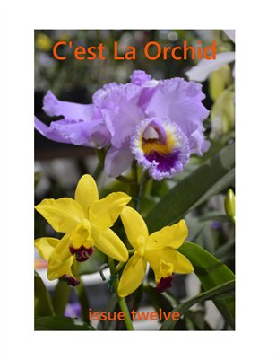C'est La Orchid Issue Twelve