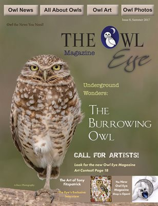 Owl Eye Issue 8 Summer 2017