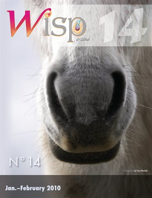 Wisp 14