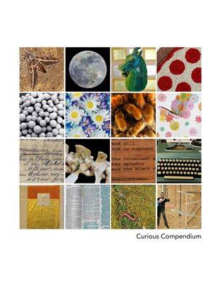 Curious Compendium