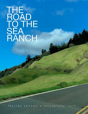 On The Road to The Sea Ranch