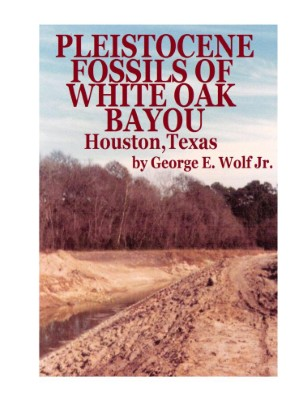 Fossils of White Oak Bayou, Houston,Texas