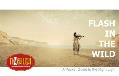Flash in the Wild: A Pocket Guide to the Right Light