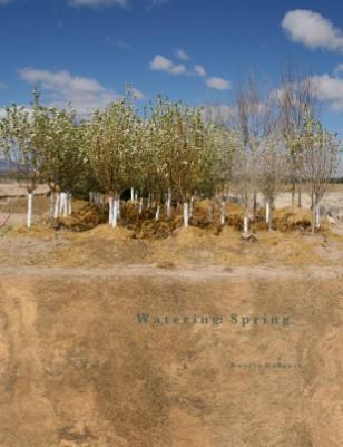 Watering: Spring