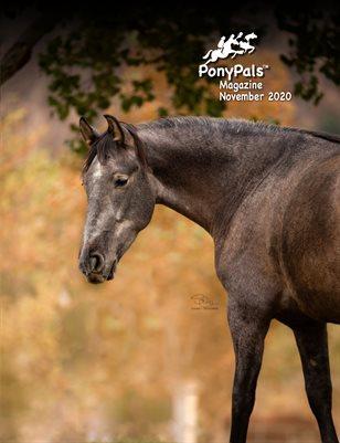November 2020 Pony Pals Magazine  Vol.10#6