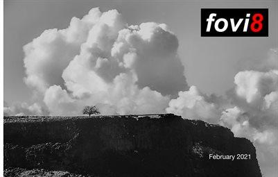 fovi8 Photo Zine - February 2021