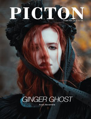 Picton Magazine FEBRUARY 2019 N34 Cover 1