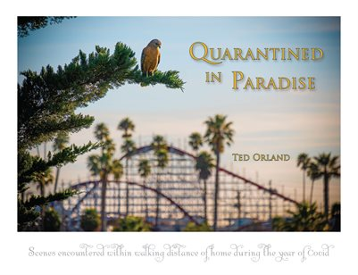 Quarantined in Paradise vers. 1.01