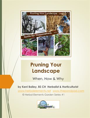 Pruning Your Landscape