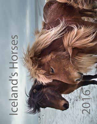 Iceland's Horses 2016