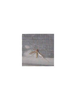 Window Mosquito Net Supplier
