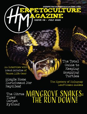 Issue #9 - July 2020
