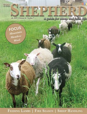 The Shepherd July 2019