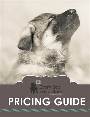 Every Dog Has a Story Pricing Guide