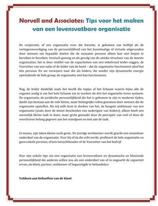 Norvell and Associates: Tips voor het maken van een levensvatbare organisatie