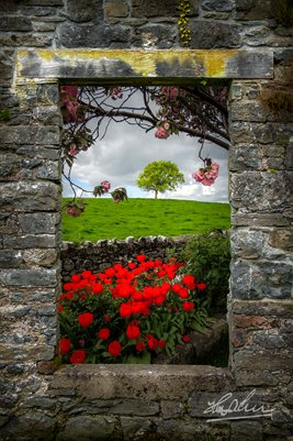 "Irish Art Poster, ""Magical County Clare Countryside,"" Poster Print"