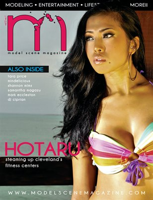 Model Scene Magazine: November/December 2010