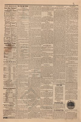 (PAGES 3-4 ) MARCH 11, 1882 MAYFIELD MONITOR NEWSPAPER, MAYFIELD, GRAVES COUNTY, KENTUCKY