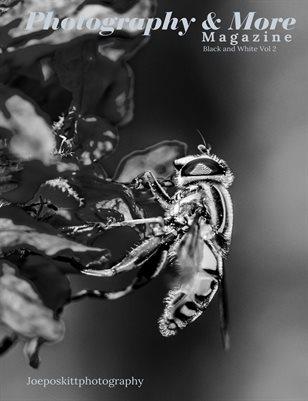Black and white Vol 2