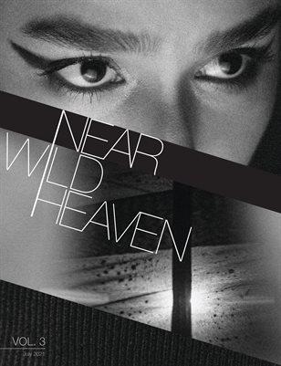 Near Wild Heaven Vol. 3: Country Feedback