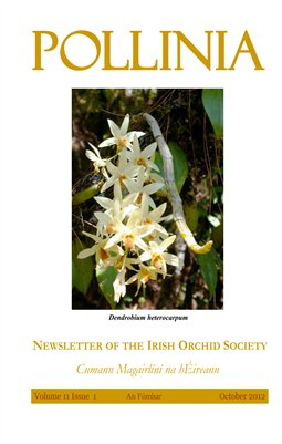 Pollinia | The Irish Orchid Society Quarterly | October 2012