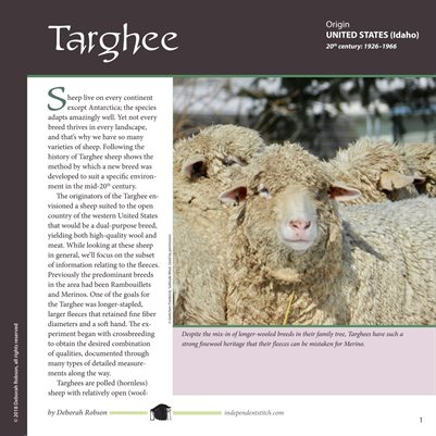Deborah Robson's Guide to Fiber: Targhee