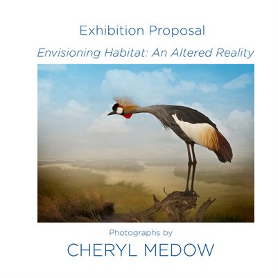 Envisioning Habitat An Altered Reality Exhibition Proposal