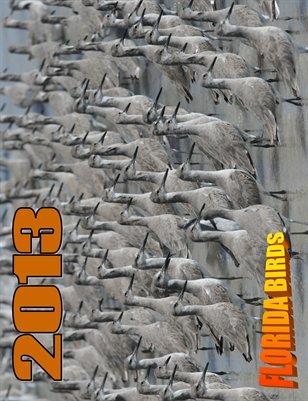 2013 FLORIDA BIRDS