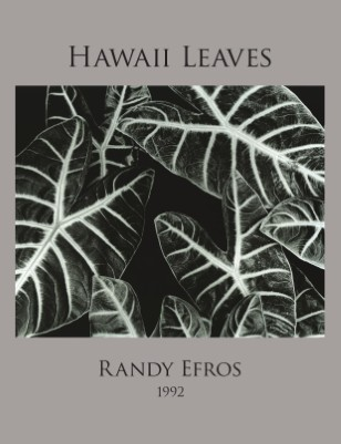 Randy Efros - Hawaii Leaves Portfolio
