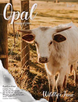 #4. Wildlife Issue - January 2021