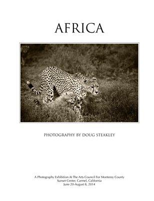 Africa Exhibition 2014