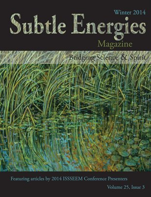 Subtle Energies Magazine Winter 2014 Vol 25 Issue 3
