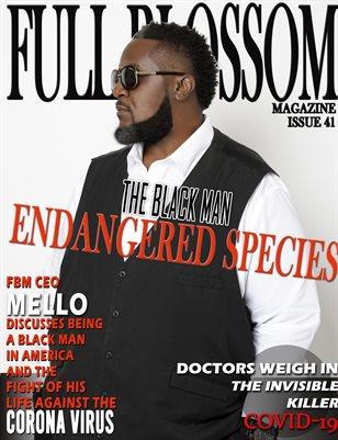 Full Blossom Magazine Issue 41