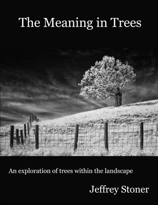 The Meaning in Trees