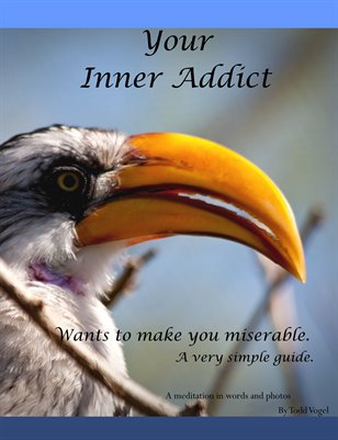 Your Inner addict wants to make you miserable