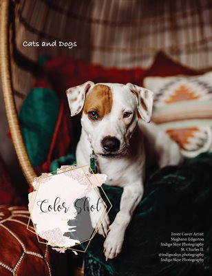 Issue #92 Cats and dogs