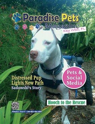 Paradise Pets Magazine, Key West, FL Vol. 2 Issue 4