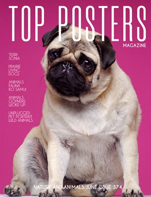 TOP POSTERS MAGAZINE- NATURE AND ANIMALS (Vol 374)