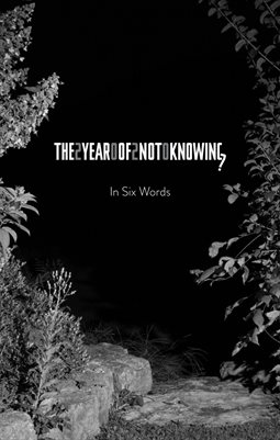 The Year Of Not Knowing: In Six Words