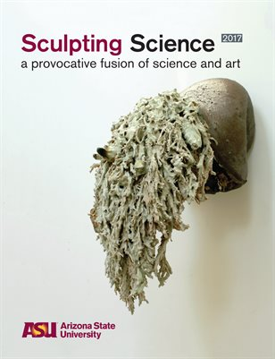 Sculpting Science 2017