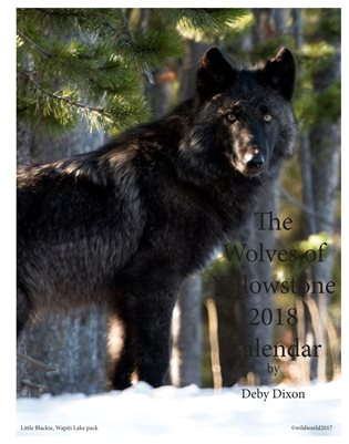Wolves of Yellowstone Calendar 2018