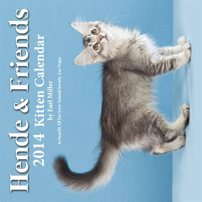 Hende & Friends 2014 Kitten Calendar
