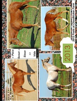 Fantastic Foals 2013
