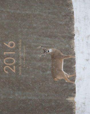 2016 North American Wildlife (11x14)