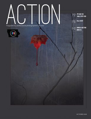 ACTION magazine by PPI - Fall 2020