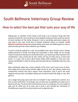 South Bellmore Veterinary Group Review: How to select the best pet that suits your way of life