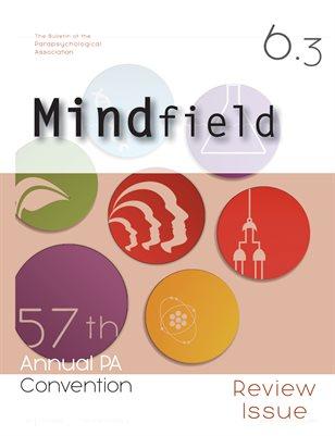 Mindfield 6(3)